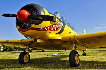 Avion de antrenament american texan