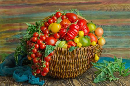 Pomodori in un cestino