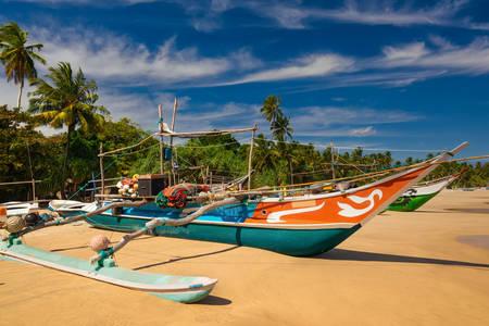 Sri Lanka'da geleneksel balıkçı tekneleri