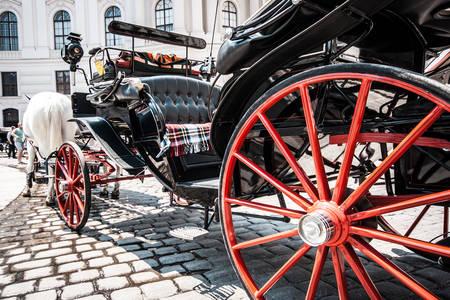 Kočijaš u palači Hofburg