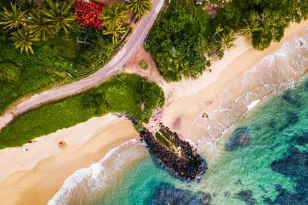 Tropik sahilin havadan görünümü