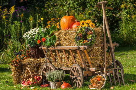 Wagon with autumn flowers and fruits