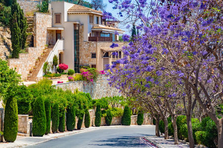 Picturesque streets of Pissouri village