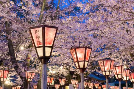 Shizuoka lantern festival