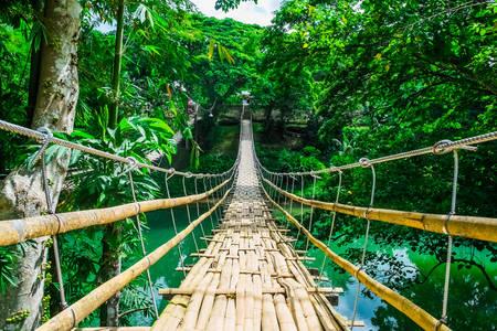 Puente colgante de bambú