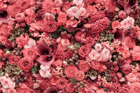 Harmonie květin