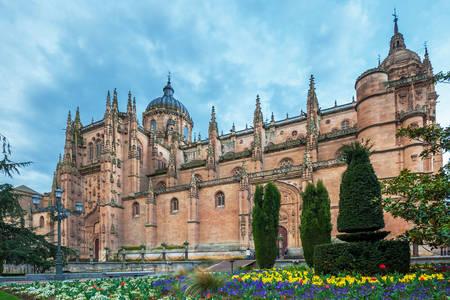 Salamanca'daki Yeni Katedral