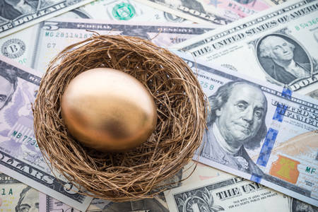 Golden egg in a nest on a background of dollars