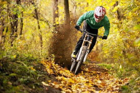 Cyclist in the autumn forest