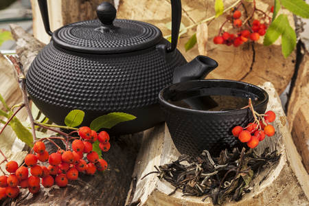 Cast iron teapot and a cup of tea with rowan