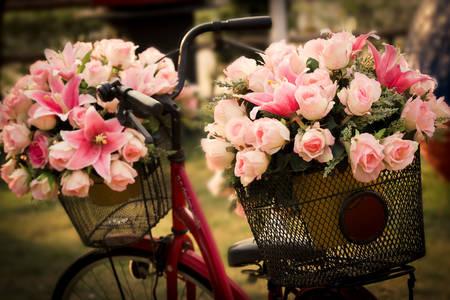 Flores em cestos de bicicleta
