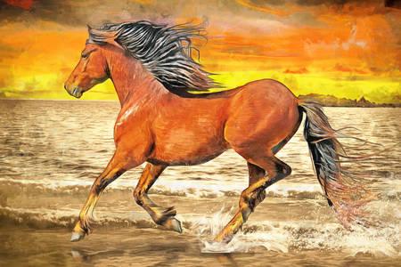 Άλογο που τρέχει κατά μήκος της ακτής