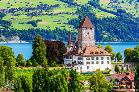 Spitz Castle by Lake Thun