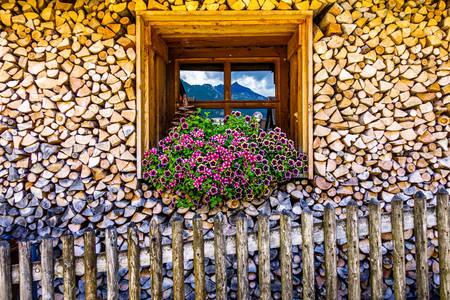 Дом из дров