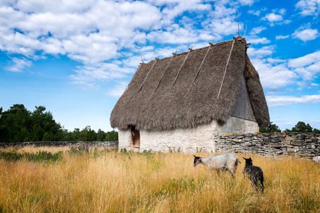 Stará stodola na ostrove Foro