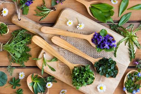 Erbe commestibili e fiori su cucchiai di legno