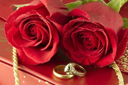 Vjenčani prstenovi i ruže