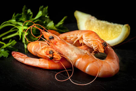 Shrimp with lemon and herbs