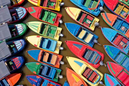 Multi-colored motor boats
