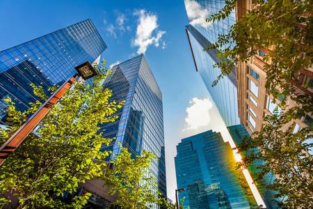Skyscrapers in downtown Edmonton