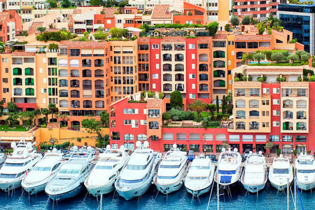Jachten in de haven van Monaco