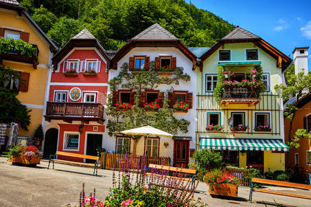 Colorful houses in the Hallstatt community