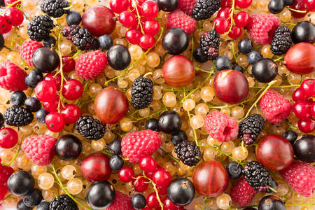 Čerstvé bobule a ovocie