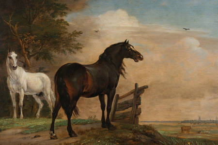 "Paulus Potter: ""Two horses in the meadow at the gate"""