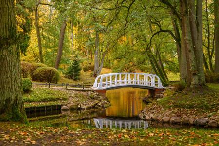 Ботанічний парк в Паланзі