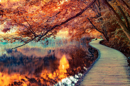 Пешеходный мост на озере
