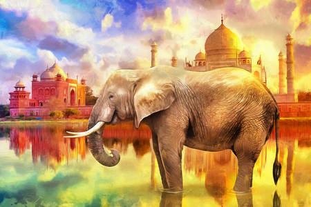 Elephant on the background of the Taj Mahal