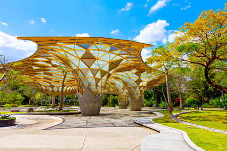 Marquesina en Jardín Botánico de Perdana