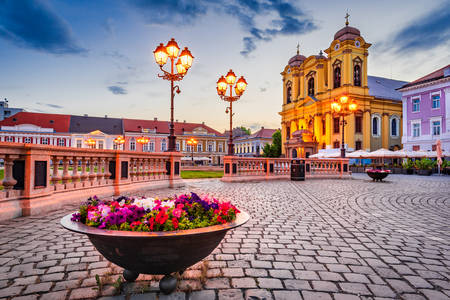 Cathedral of Saint George in Timisoara