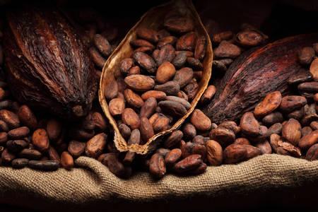 Жареные какао-бобы
