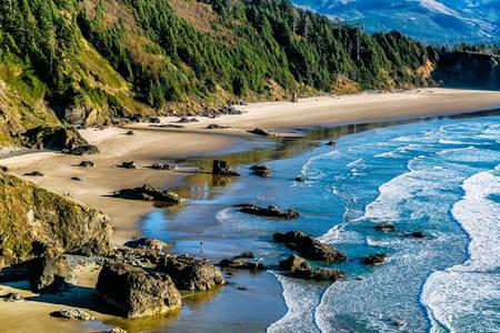 Crescent Plajı'nda Pasifik Kıyısı